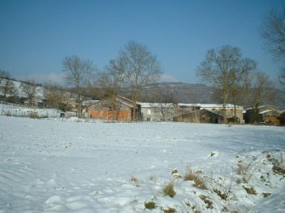 Domaine Thomson en hiver