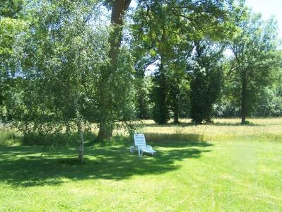 garden jardin (8)