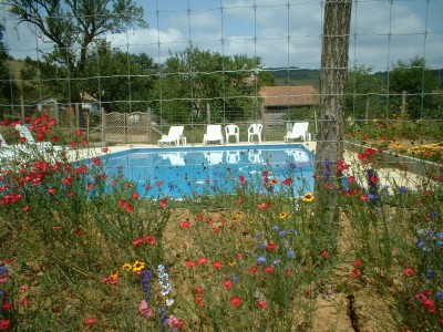 swimming pool piscine (4)